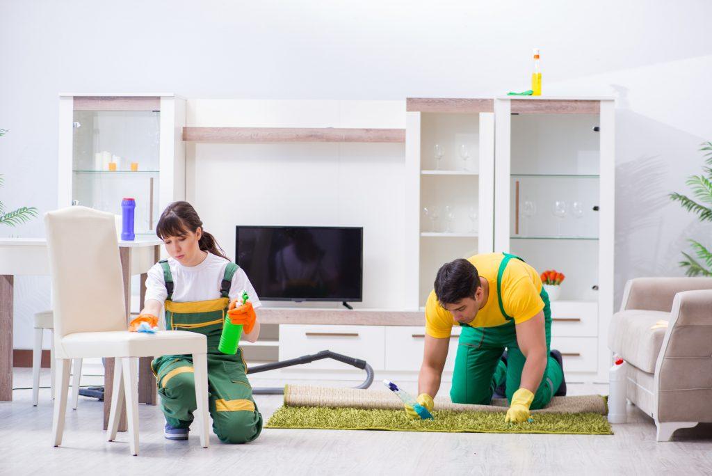 کمک به نظافت منزل